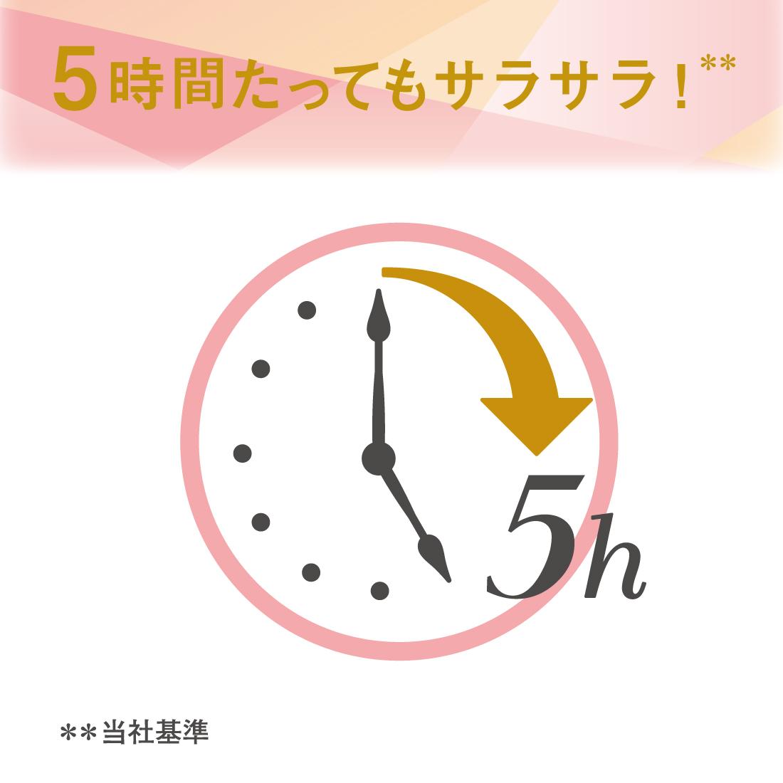 エリス コンパクトガードプリズム企画品 香りつき (多い昼〜ふつうの日用) 羽つき 26枚